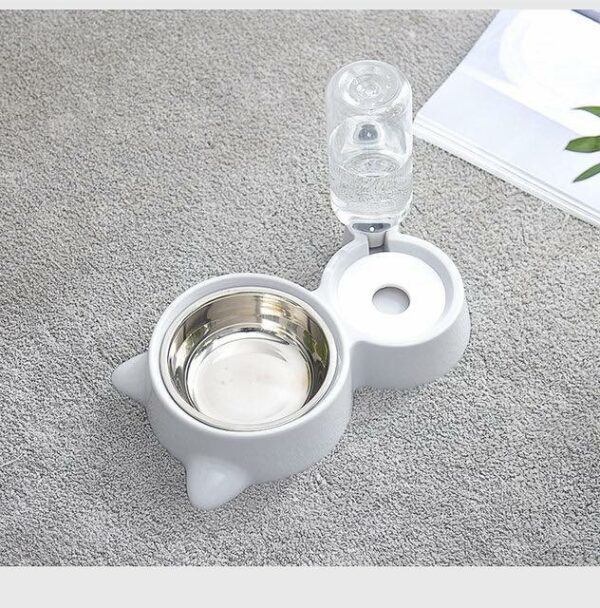 food bowl and water feeder